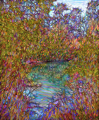 Digital Art - Silent Reflections On Autumn Pond - Boulder County Colorado by Joel Bruce Wallach