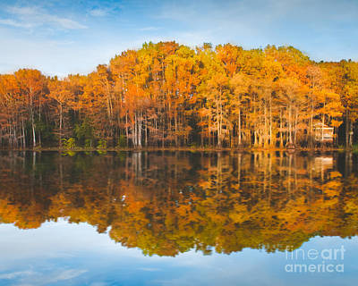 Reflections On Caddo Art Print