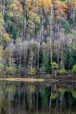 Harrison Hot Springs Wall Art - Photograph - Reflections On Deer Lake by Michael Russell