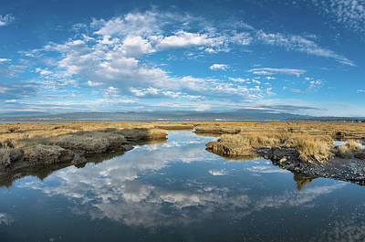 Photograph - Reflections On Humboldt Bay Afternoon by Greg Nyquist