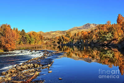 Photograph - Reflections On The Payette River by Robert Bales