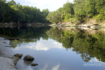 Suwannee River Photograph - Reflections On The Suwannee River by Inga Spence