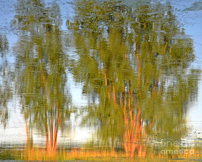 Photograph - Reflections On Willow Pond by Kathy M Krause