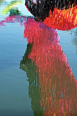 Photograph - Reflections by Perry Frantzman