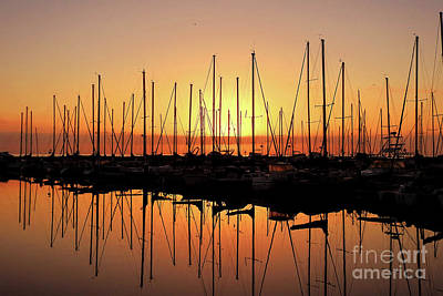 Photograph - Reflections by Scott Cameron