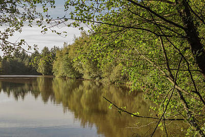 Photograph - Reflections 2 by Wendy Cooper