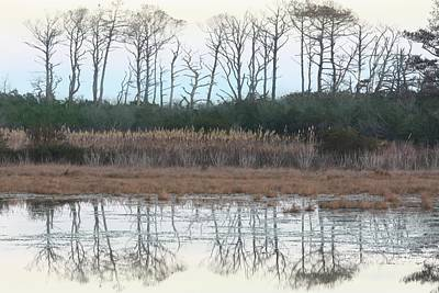 Photograph - Reflections Winter by Captain Debbie Ritter