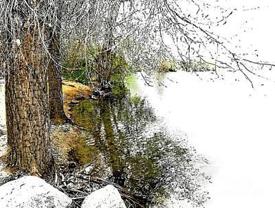 Digital Art - Reflective Trees by Deborah Nakano