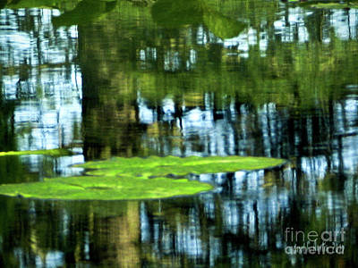 Photograph - Reflective Water Lily Pond  by Carol F Austin