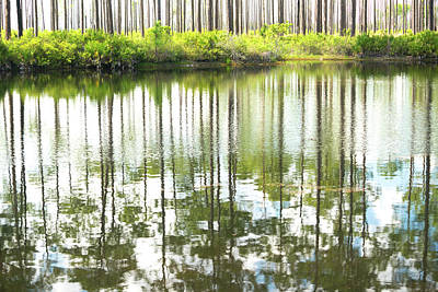 Photograph - Reflex Lake by Benedict Heekwan Yang