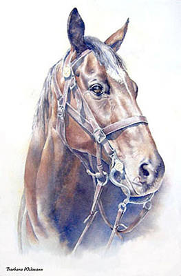 Regal  A Cavalry Horse Portrait Art Print by Barbara Widmann