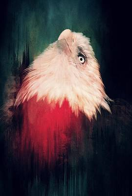 Photograph - Regal Eagle Red by Alice Gipson