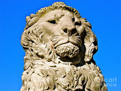 Regal Lion Art Print by E Robert Dee