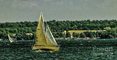 Photograph - Regatta On Seneca Lake by William Norton