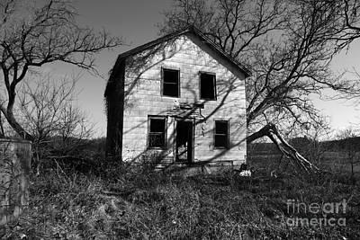 Abandonded Photograph - Regeneration by Amanda Barcon