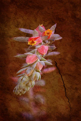 Regrowth Art Print by Holly Kempe