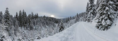 Photograph - Rehberger Graben, Harz by Andreas Levi
