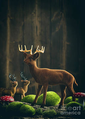 Magical Photograph - Reindeer by Amanda Elwell
