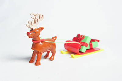 Photograph - reindeer and Sleigh ii by Helen Northcott