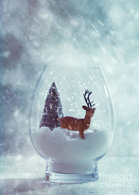 Reindeer In Glass Snow Globe  Art Print by Amanda Elwell