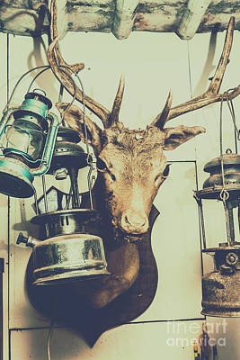 Wild And Wacky Portraits - Reindeer with old lanterns hanging on horns by Jorgo Photography