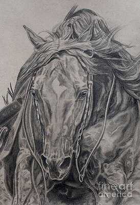 Best Sellers - Animals Drawings - Reiner by Jana Goode