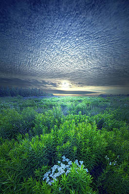 Photograph - Rejoice For Your Soul Is Alive by Phil Koch