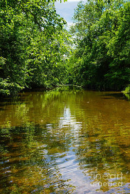 Photograph - Relaxing At The Creek by Jennifer White
