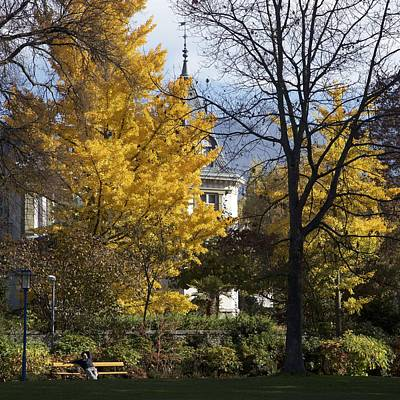 Vevey Photograph - Relaxing In The Park by Colleen Williams