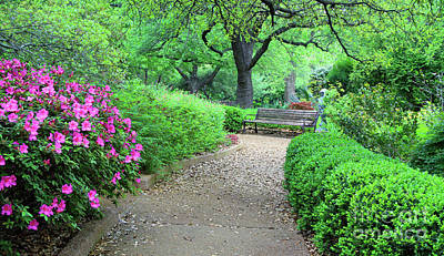 Photograph - Relaxing Path by Inspirational Photo Creations Audrey Taylor