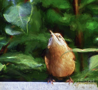 Remain Hopeful - Carolina Wren Art Print by Kerri Farley