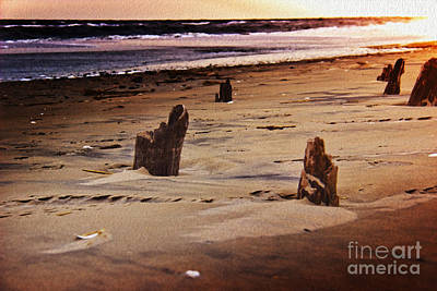 Landscape Photograph - Remains Of A Pier by Tom Gari Gallery-Three-Photography