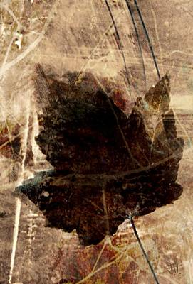 Mixed Media - Remains Of Autumn by Jim Vance