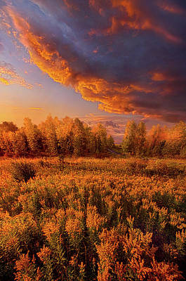 Photograph - Remember Everything by Phil Koch
