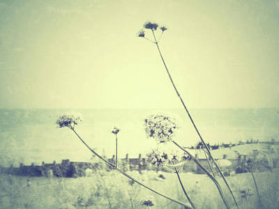 Eastbourne Photograph - Remember That Summer by Connie Handscomb