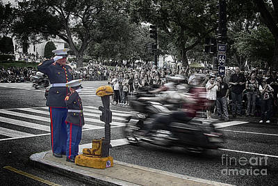 Remembering The Cost Of Freedom 2 Art Print by Tom Gari Gallery-Three-Photography