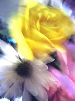 Photograph - Remembrance Rose by Carolyn Jacob