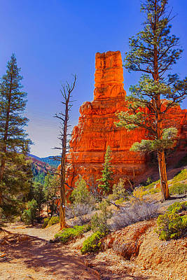 Photograph - Remembrances Of Red Canyon by John M Bailey