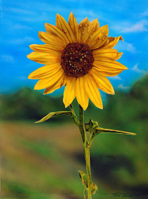 Reminiscing Glorious Summer Days Art Print by Rick Primeau