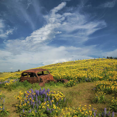 Reminiscing In The Wild Flowers Art Print