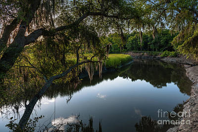 Photograph - Remley's Point Creekside by Dale Powell