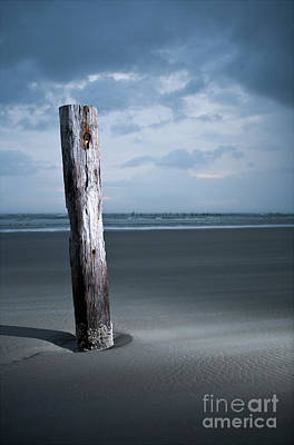 Photograph - Remnant Of The Past On Outer Banks by Dan Carmichael