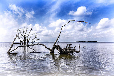 Photograph - Remnants by Alan Raasch