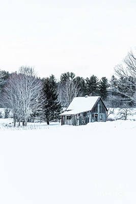 Print featuring the photograph Remote Cabin In Winter by Edward Fielding