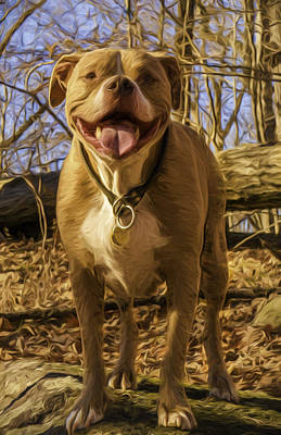 Photograph - Remy 5 by Jorge Perez - BlueBeardImagery