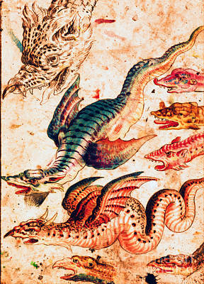 Painting - Renaissance European Dragons by Unknown