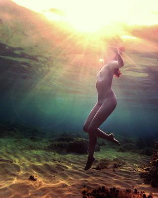 Photograph - Renaissance by Gemma Silvestre