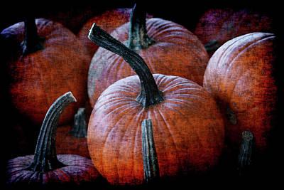 Photograph - Renaissance Pumpkins by Jennifer Wright