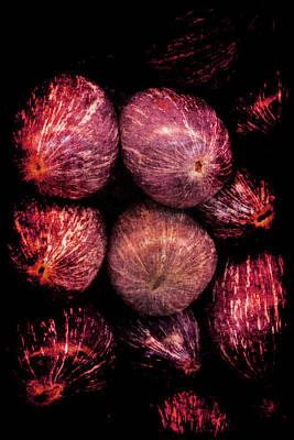 Photograph - Renaissance Turkish Eggplant by Jennifer Wright