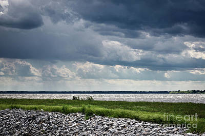 Photograph - Rend Lake by Andrea Silies